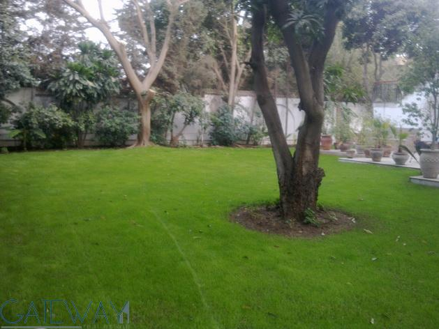 ( Ref:1465 ) Unfurnished Villa for Rent in Maadi Degla with Private Garden
