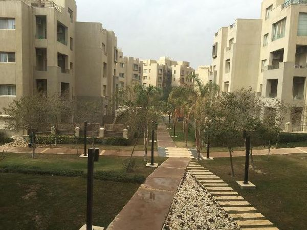 Residential Building for Rent in The Village Compound - New Cairo
